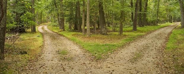 the road not taken theme essay